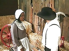 Amish husbandman annalizes a..