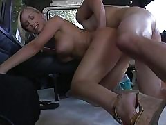 Nicole Aniston regarding a..